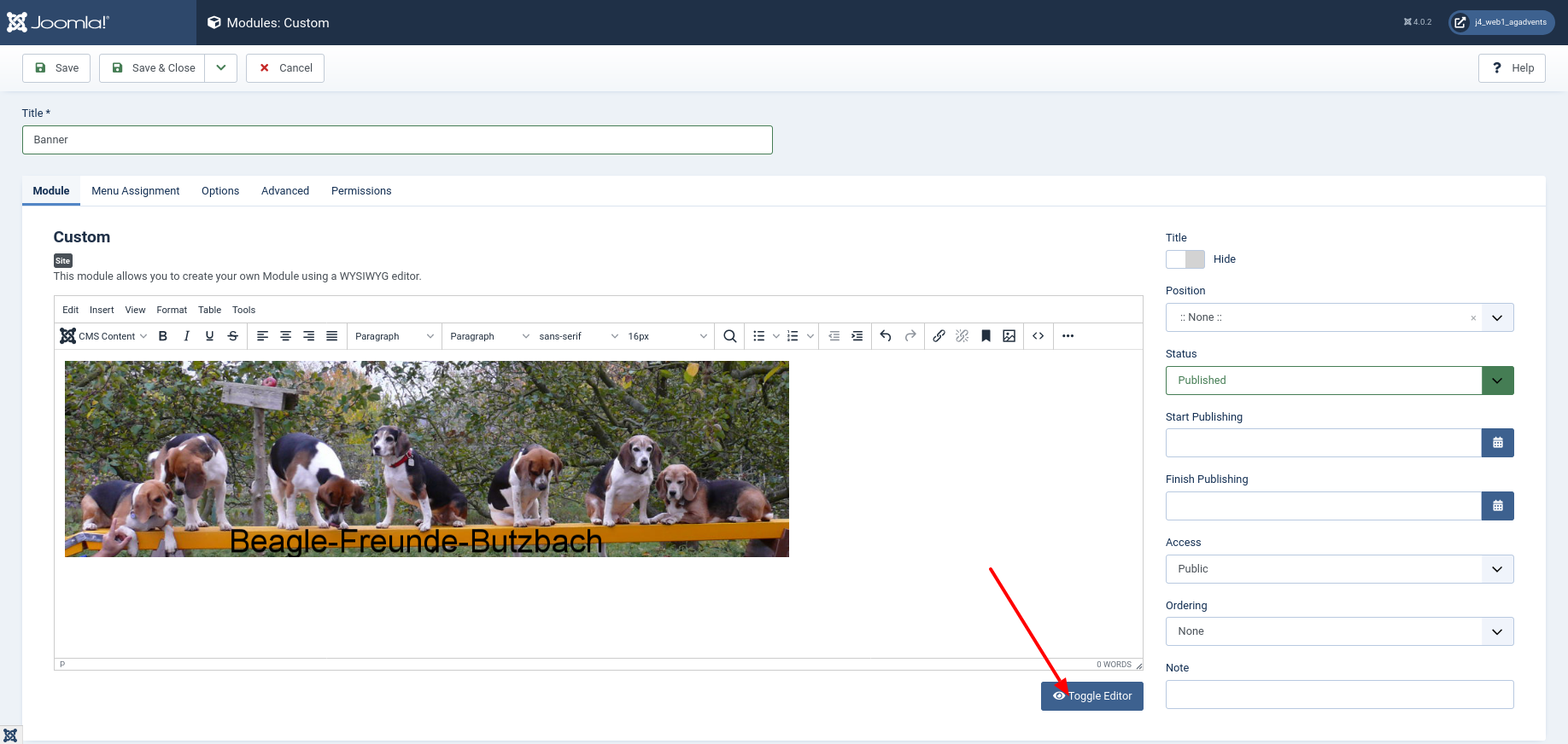 Add CSS to module custom image