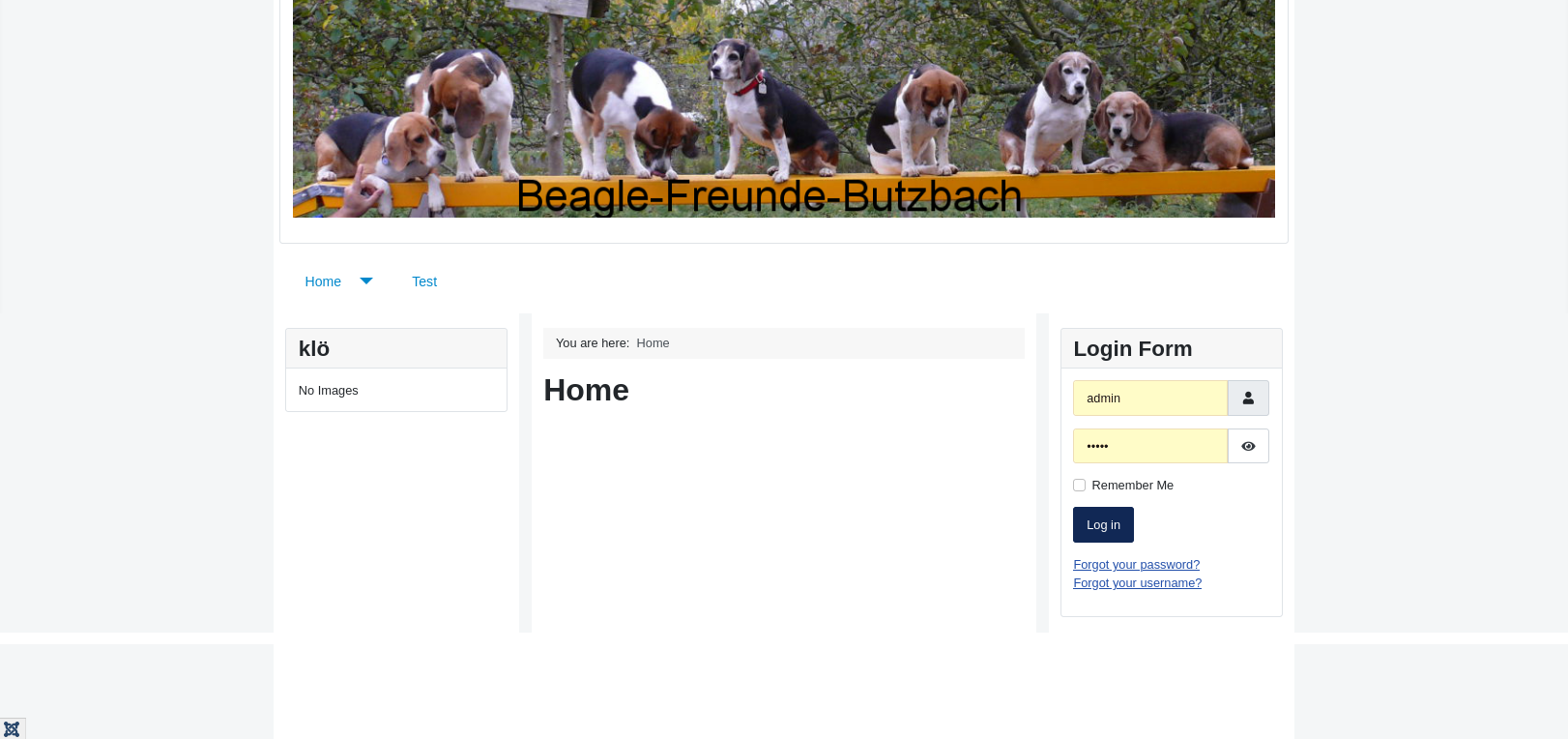 Add CSS styles in Template Manger - website in frame