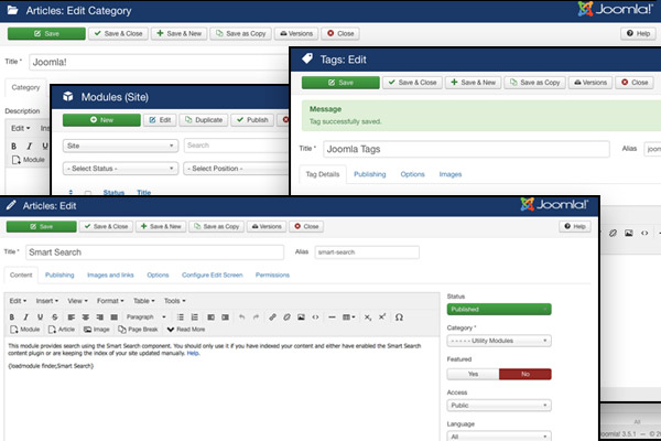 joomla standard interface