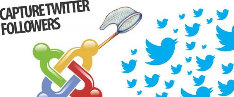 Six Creative Ways For Joomla Developers to Boost Twitter Followers