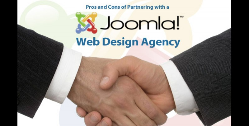 Pros and Cons of Partnering with a Web Design Agency