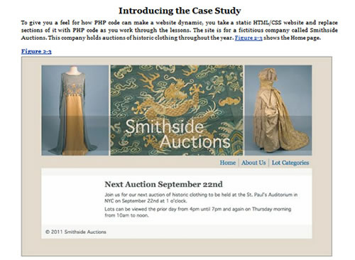 Snapshot of the Case Study Website used in the book